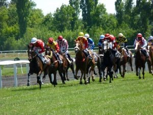 Trading horse racing markets